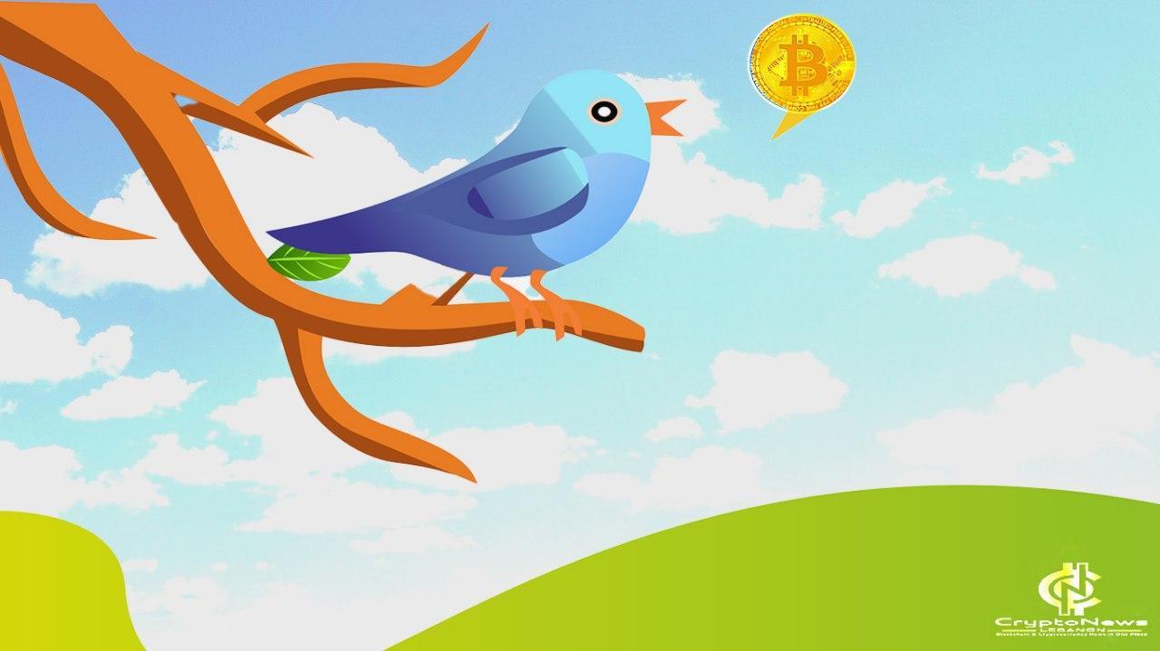 تويتر تريد تطبيق اللامركزية على الشبكات الاجتماعية بمساعدة كاردانو