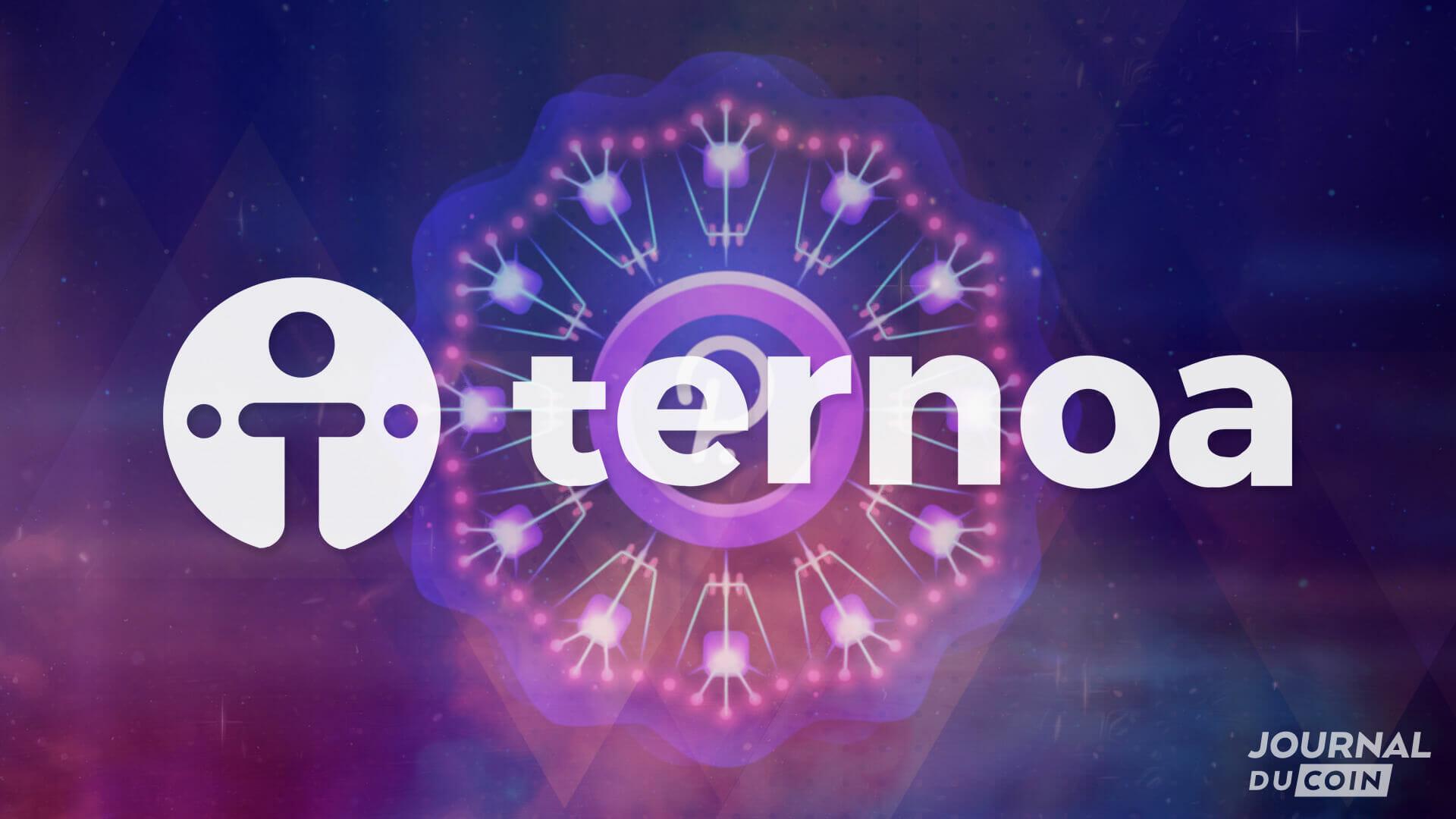 Ternoa peut-il devenir le projet phare de Polkadot ? un Testnet en guise de confirmation