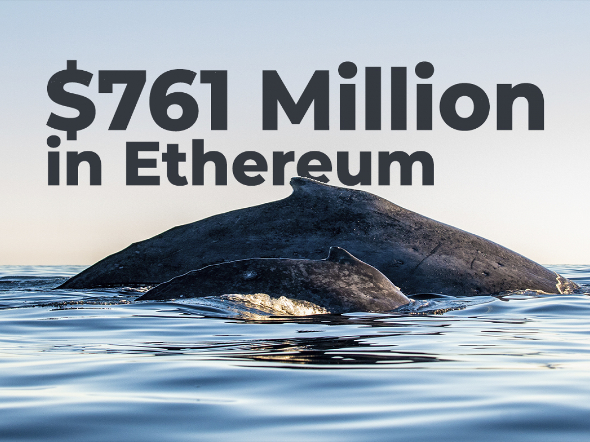 Whales Move $761 Million in Ethereum, While Coin Recovers to $3,500