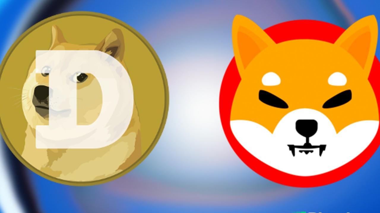 DOGE ve SHIB Tahmini: Bu Seviyeler Yakın Görünüyor!