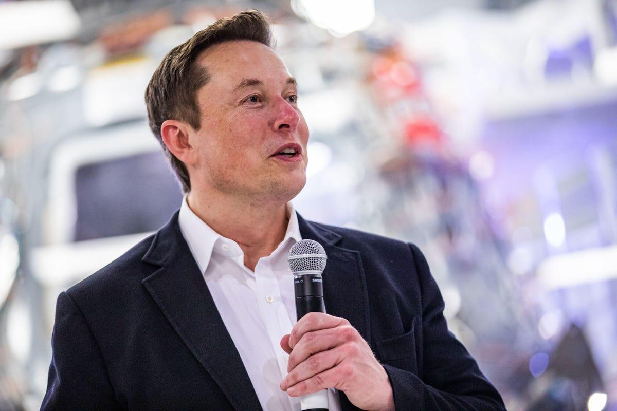 Kripto Yorumcusu: Bu 2 Altcoin, Elon Musk'un Yeni Aşkı Olabilir!