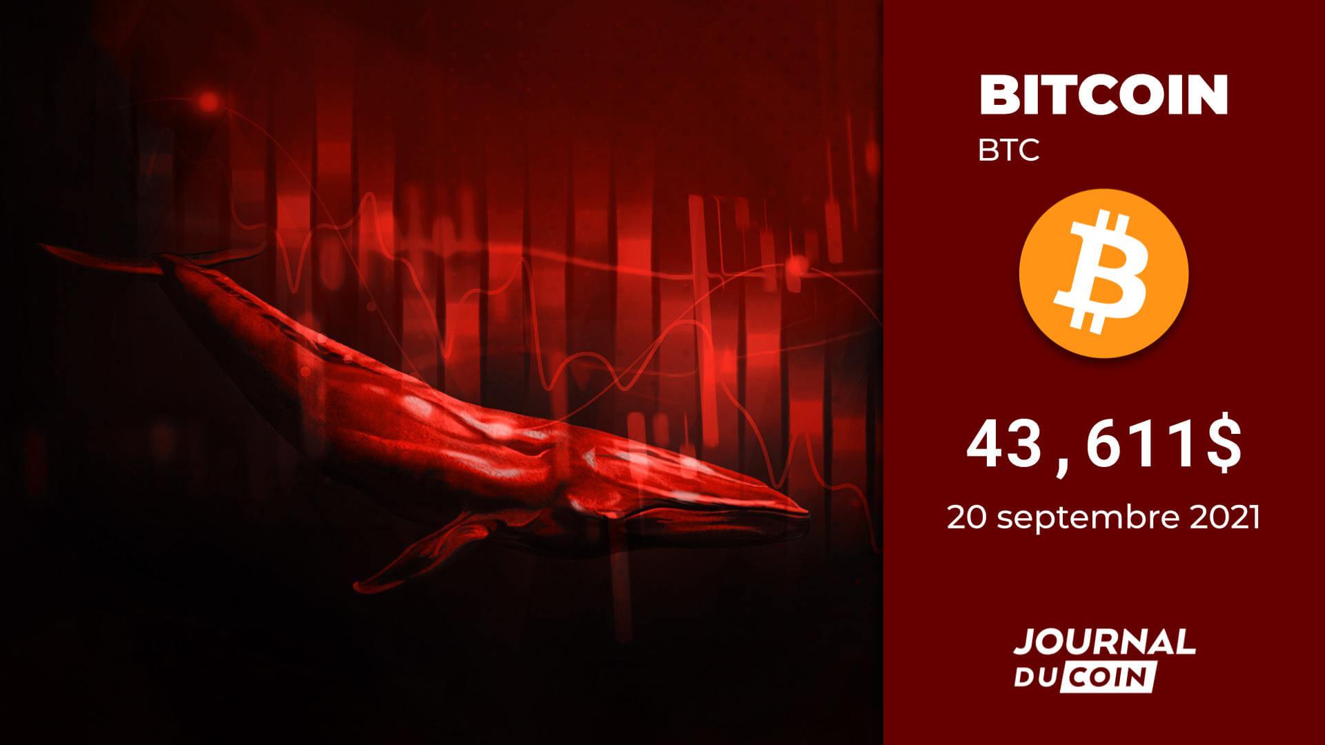 Bitcoin le 20 septembre 2021 – Du sang dans les rues