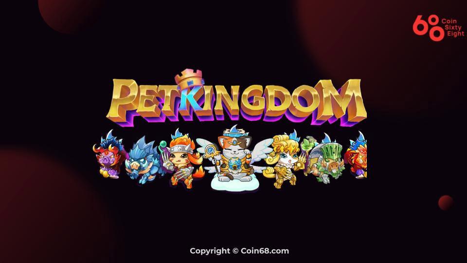 Hướng dẫn chơi Pet Kingdom dành cho người mới