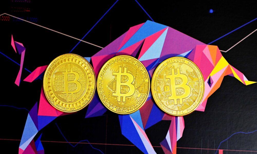 ¿Que es esta subcultura de Bitcoin 'pequeña' pero 'ruidosa' que algunos llaman 'tóxica'?