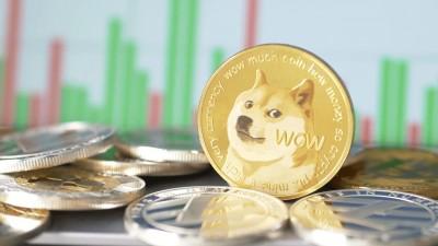 Цена падает, а спрос растёт: Dogecoin с каждым днем становится все популярнее