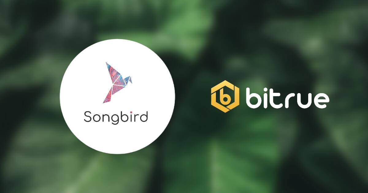 Bitrue、仮想通貨XRP関連エアドロップのソングバード(SGB)上場