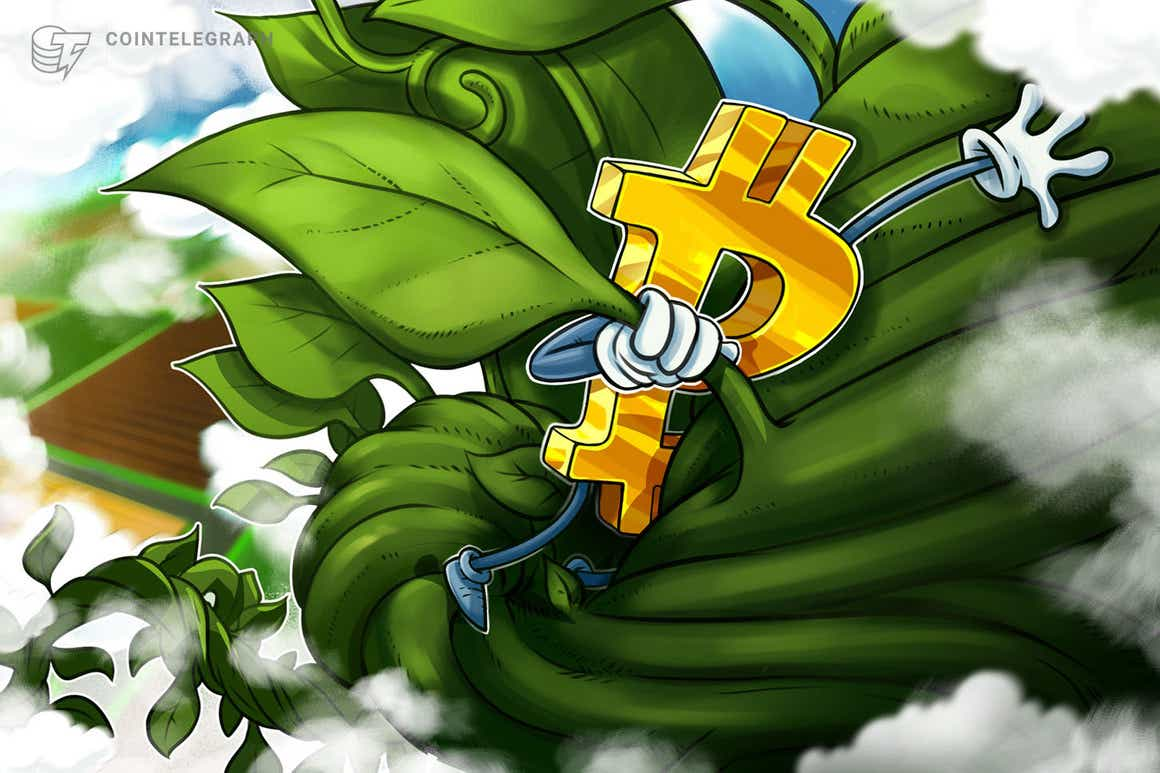 """""""Kaum noch Verkaufsdruck"""" – Bitcoin hat freie Fahrt nach Sprung über 60.000 US-Dollar"""
