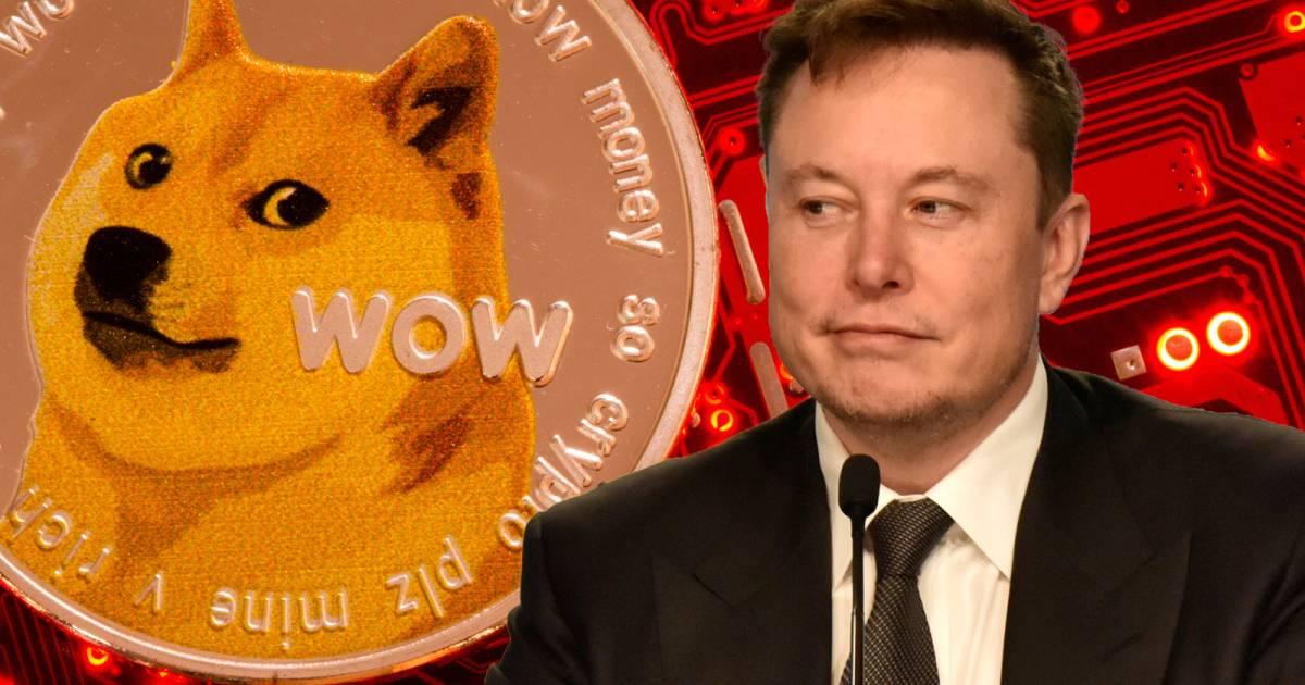 Elon Musk มีทรัพย์สินเทียบเท่ากับเหรียญ Dogecoin จำนวน 8.61 แสนล้าน DOGE แล้ว