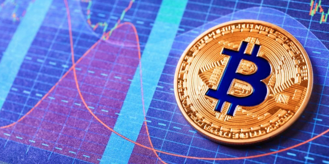 Pantera Capital's CEO: Bitcoin Bull Cycles Went Up 15x in 300 Days
