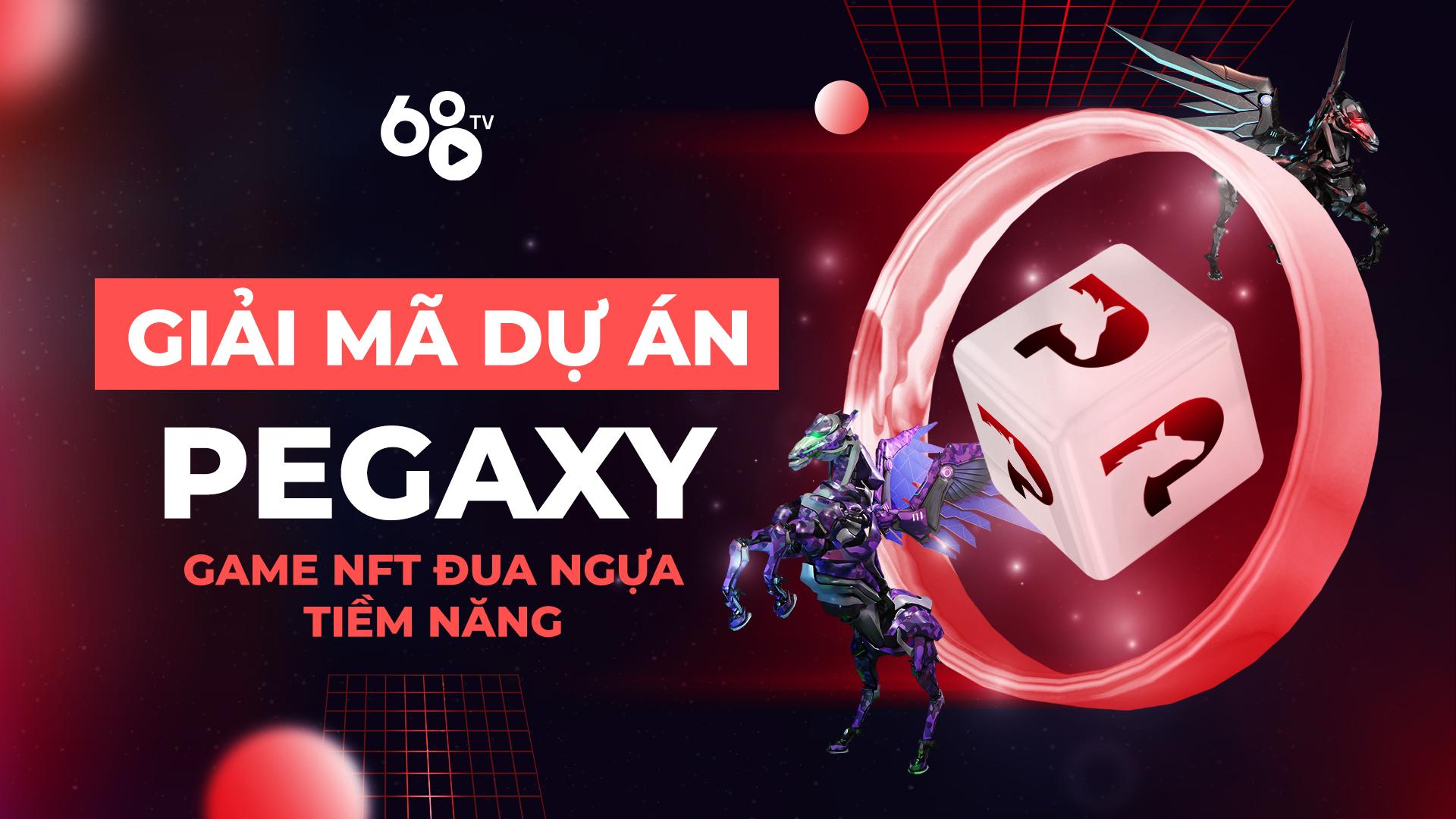 Giải mã dự án: Review Pegaxy – Dự án Game NFT đua ngựa tiềm năng trên hệ sinh thái Polygon