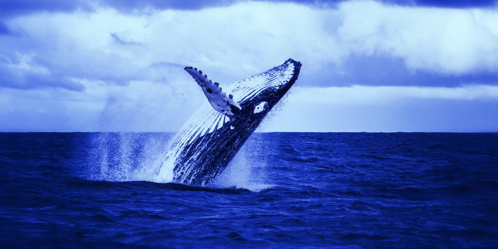 Bitcoin's Biggest Whales are in Decline
