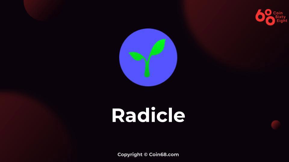 Đánh giá dự án Radicle (RAD coin) – Thông tin và update mới nhất về dự án