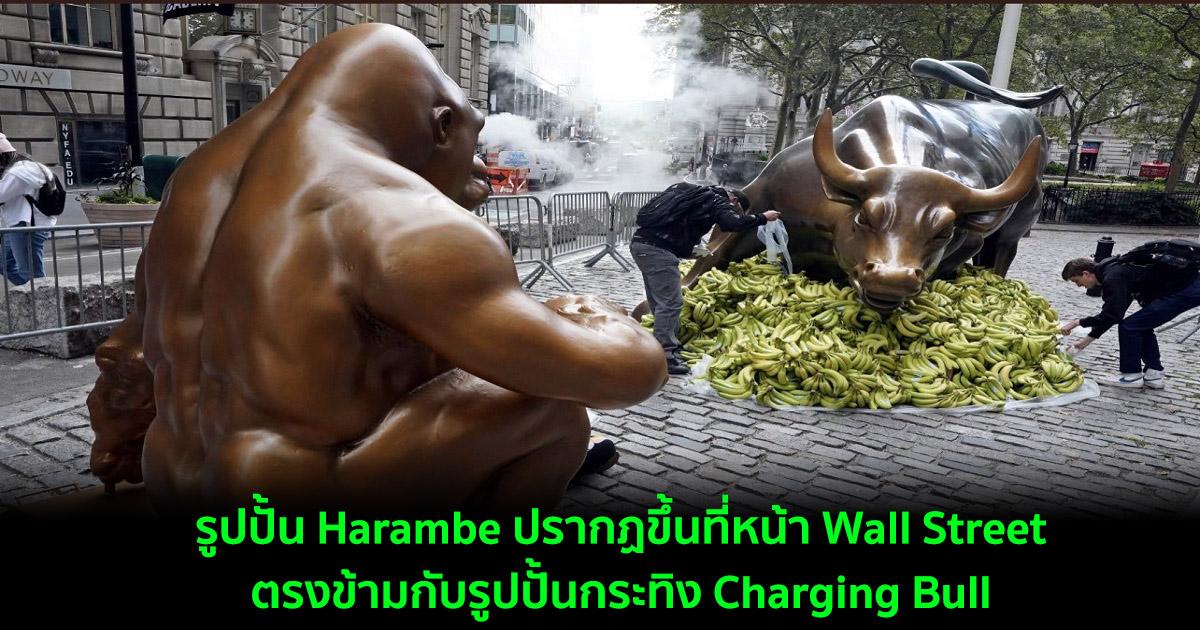รูปปั้น Harambe ปรากฏขึ้นที่หน้า Wall Street ตรงข้ามกับรูปปั้นกระทิง Charging Bull