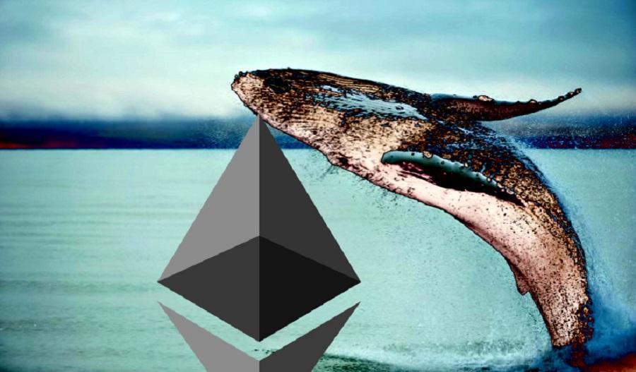 เจ้ามือ Ethereum ระดับท็อป ๆ ของโลกซื้อ ETH เพิ่มอีก 13.9% เข้าพอร์ต