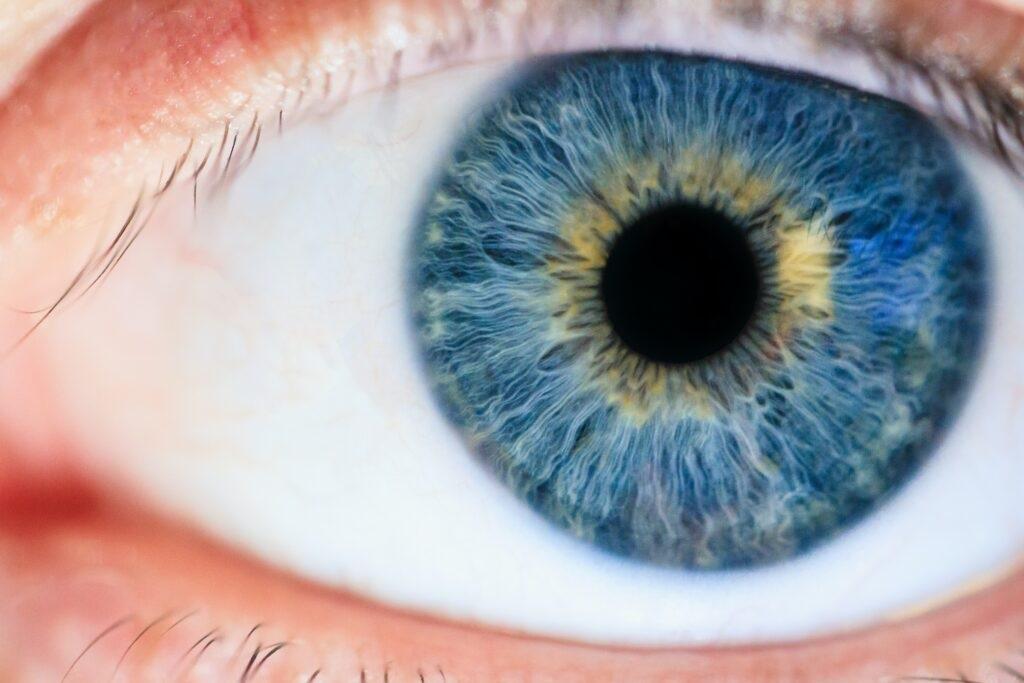 Neue Technologie scannt Augen im Tausch gegen Kryptowährung Worldcoin