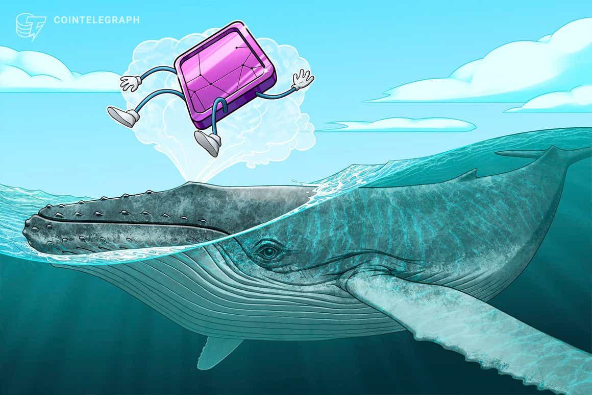 """""""Große Ungleichverteilung"""" – Wale beherrschen den NFT-Markt auf Ethereum"""