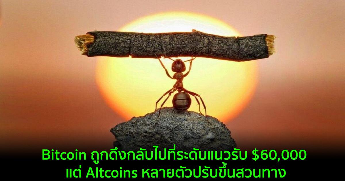Bitcoin ถูกดึงกลับไปที่ระดับแนวรับ $60,000 แต่ Altcoins หลายตัวปรับขึ้นสวนทาง