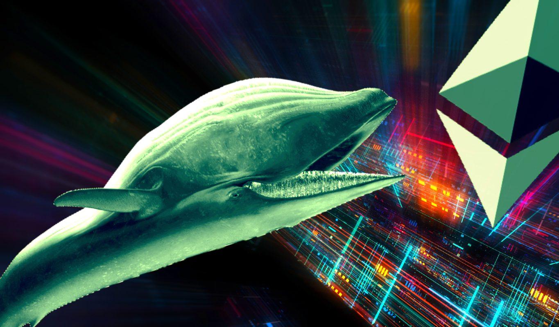 Devasa Balinalar, Tüm Ethereum NFT'lerinin Yüzde 80'ini Kaptı!