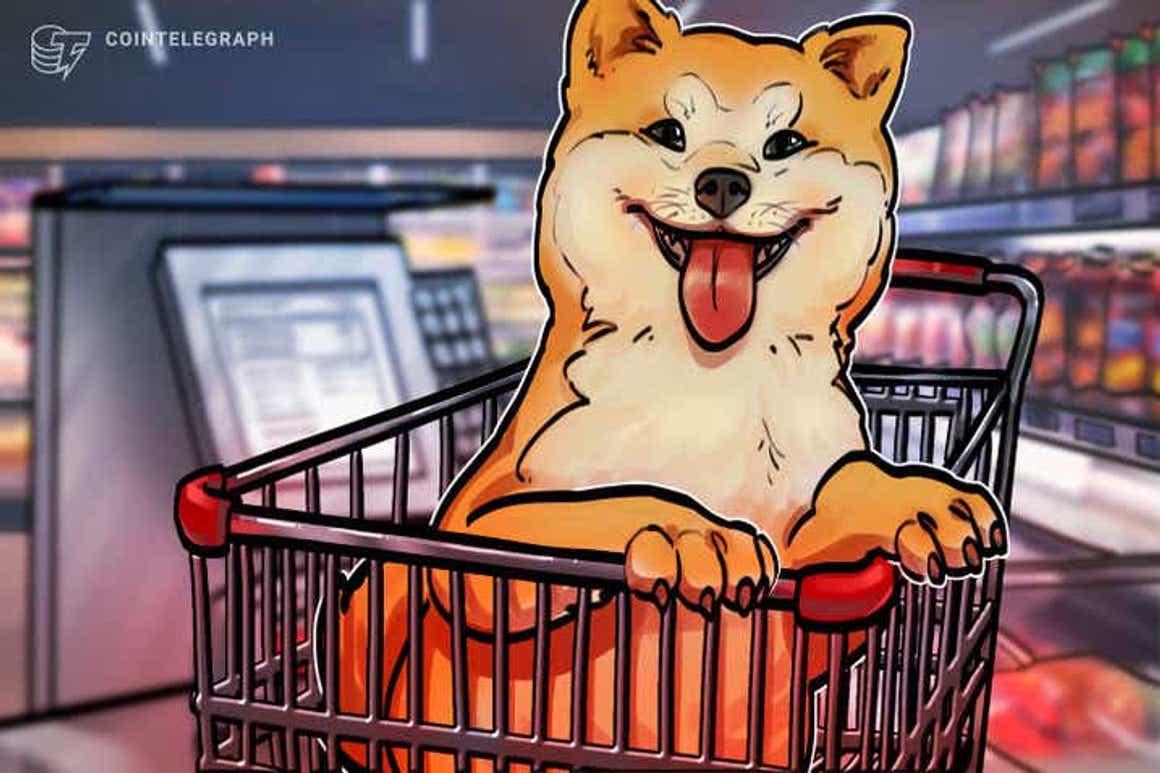 Shiba Inu sobe 30% e tem força para subir mais com traders trocando Dogecoin por Shiba na esperança de listagem na Robinhood
