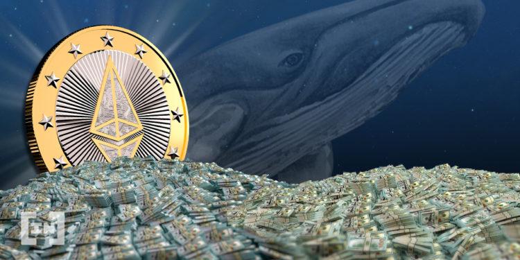 Ethereum стал «акваторией» для китов DeFi-рынка — DappRadar