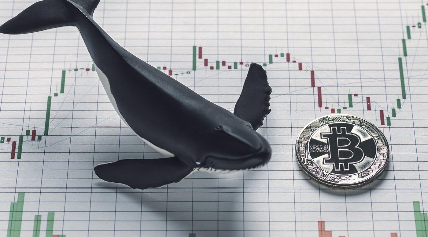 Baleias movem R$10 bilhões em duas transações após correção do Bitcoin