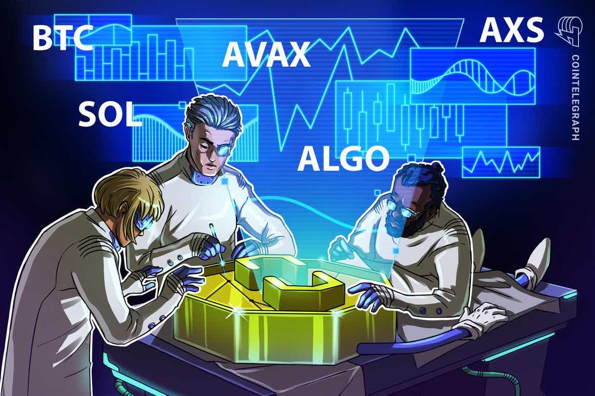 Top 5 criptomoedas para ficar de olho nesta semana: BTC, SOL, AVAX, ALGO, AXS