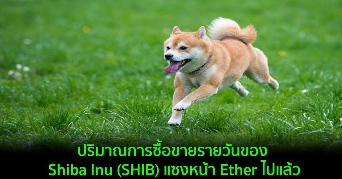 ปริมาณการซื้อขายรายวันของ Shiba Inu (SHIB) แซงหน้า Ether ไปแล้ว