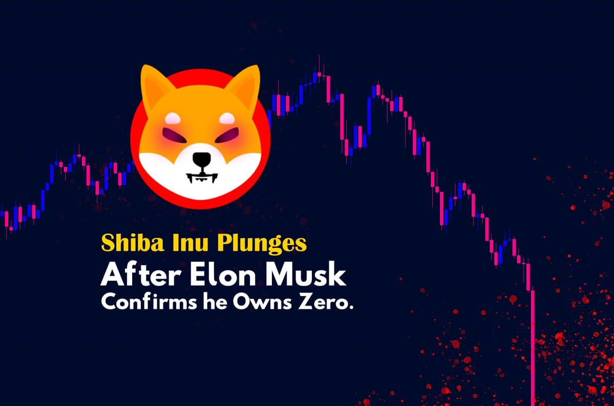 """Elon Musk tuyên bố không đầu tư Shiba Inu, chỉ """"yêu"""" mỗi DOGE – Lý do SHIB bắt đầu """"dump""""?"""