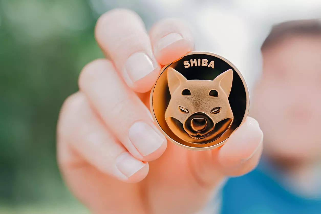 Мем-коин Shiba Inu обновил АТН, а после обвалился на 27%