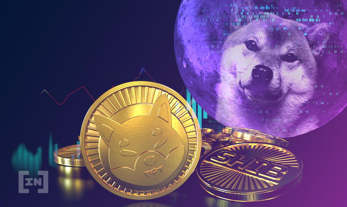 Shiba Inu pode passar Dogecoin após subir 50%