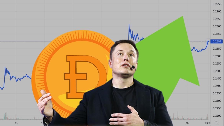 Илон Маск за «народную криптовалюту». Новый памп для DOGE