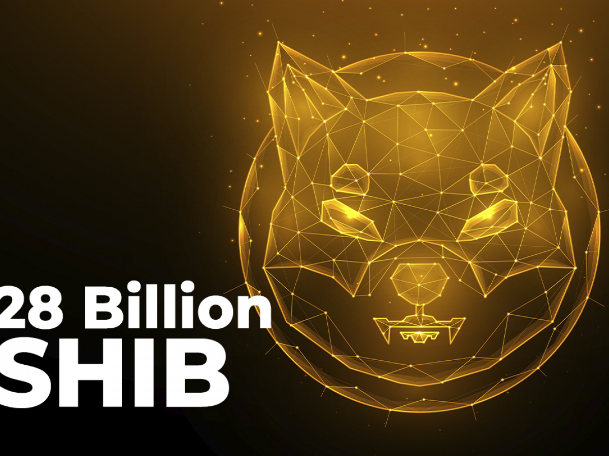 28 Billion SHIB Wired by Anon Whales as Coin Sits at $0.000046