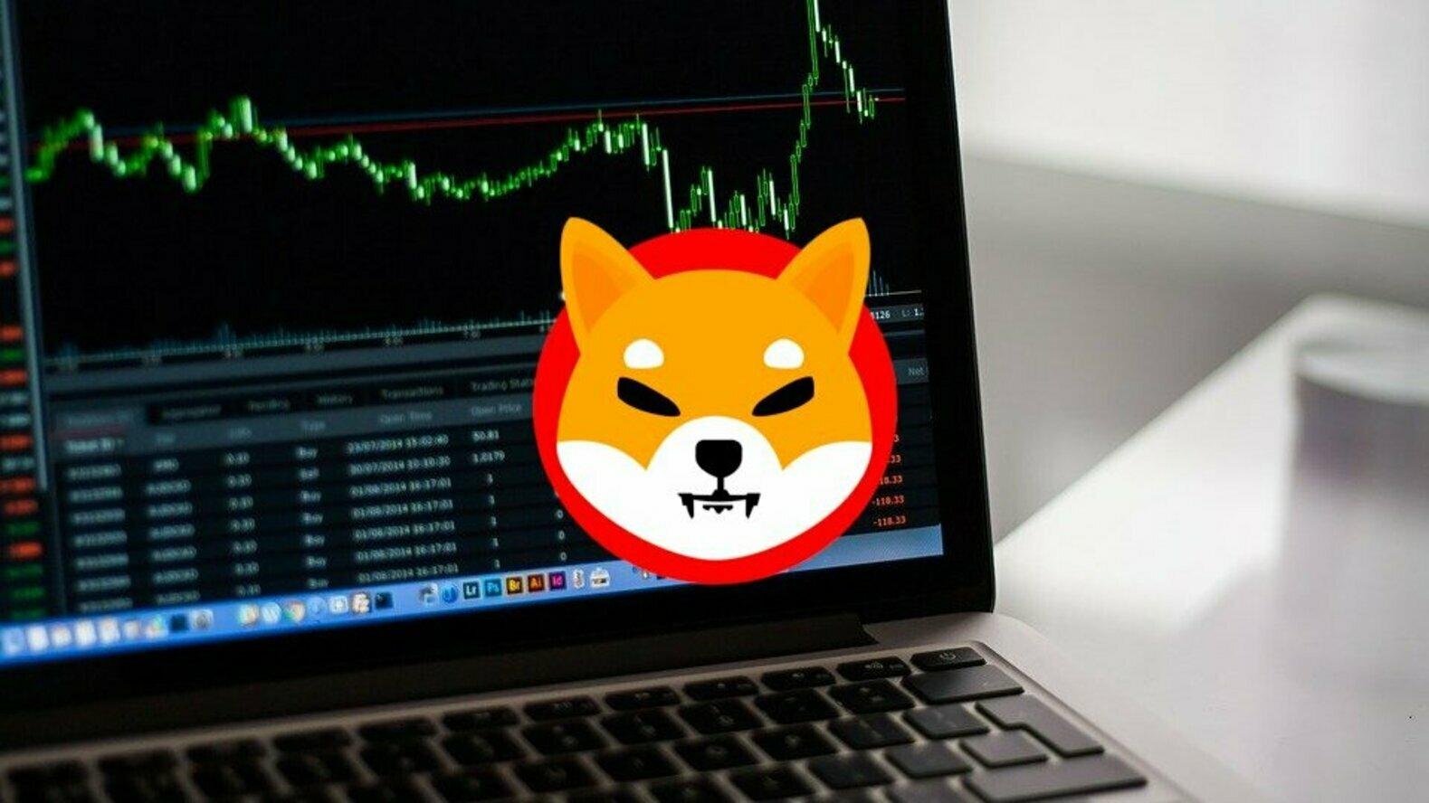 Popüler Türk Bitcoin Borsasından SHIB Müjdesi: Fiyat Zıplıyor!