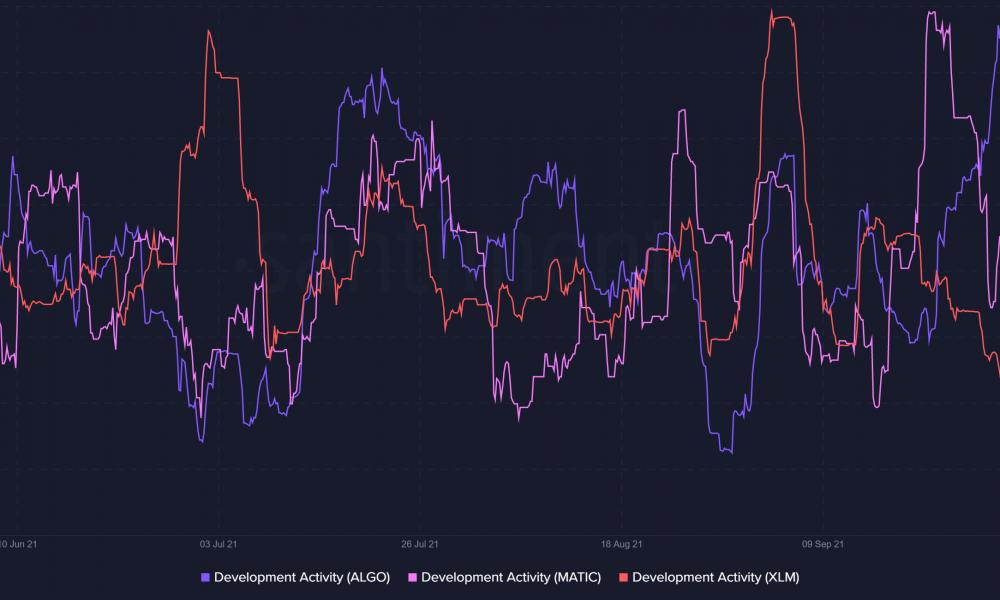 Que esperar de los alts de $ 1 como ALGO, MATIC y XLM a la luz del repunte de Bitcoin