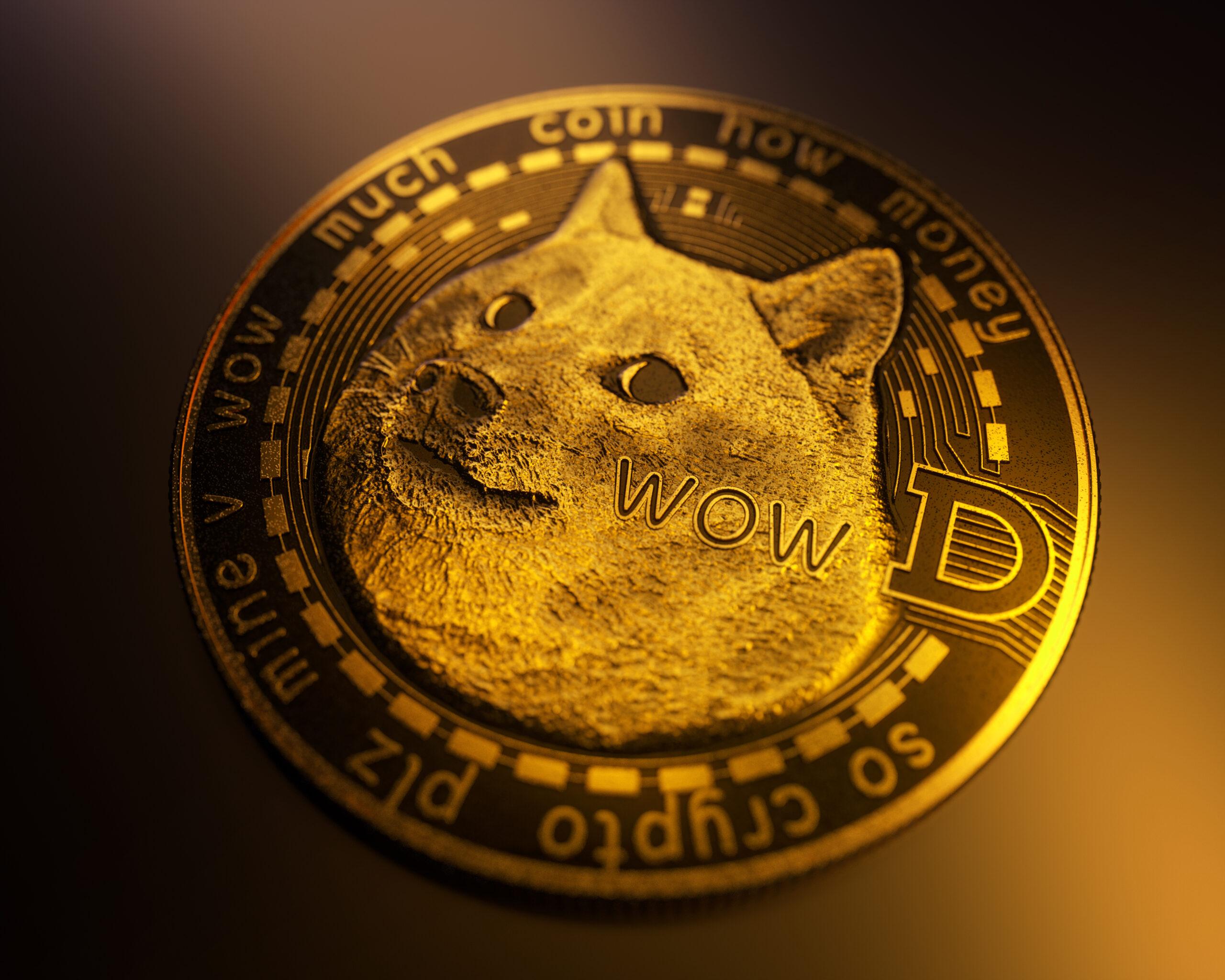 ドージコイン投資に潜むリスク