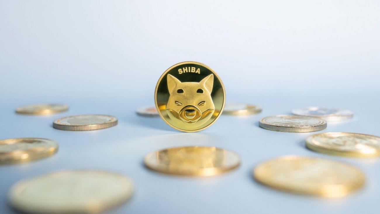 «The Shiboshis» : le prix minimum des NFTs du Shiba Inu (SHIB) grimpe à près de 5 000 dollars