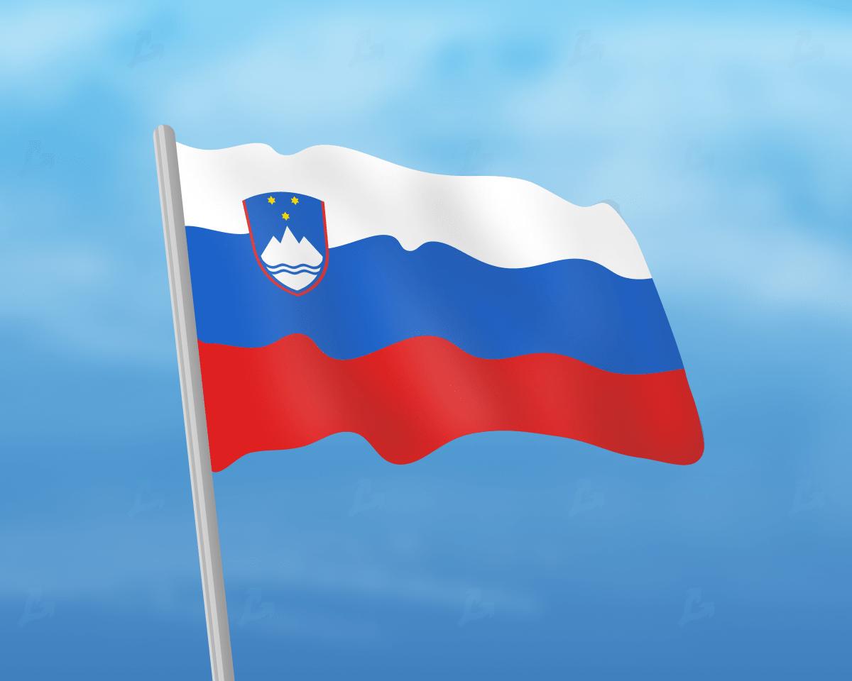 В Словении обсудят налогообложение операций с криптовалютами