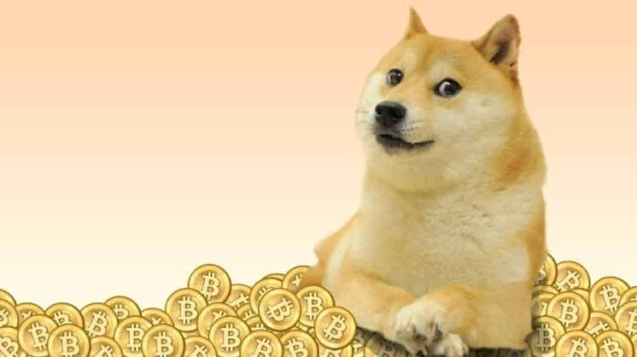 DOGE Price Tanks To $0.24, DOGE Finds Support At 100-SMA