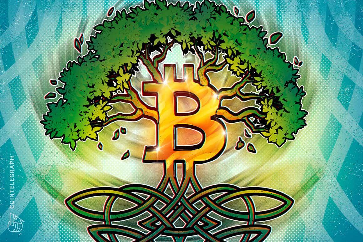 A las raíces de la minería: Bitcoin se vuelve más ecológico que nunca