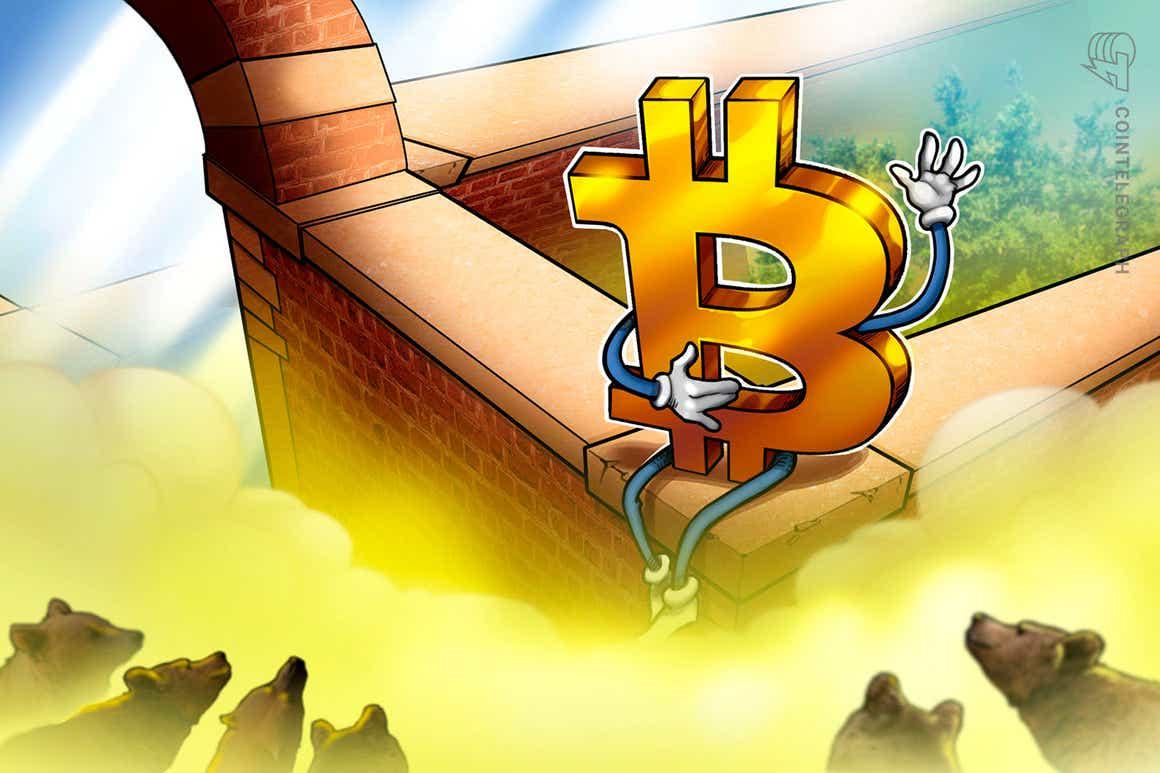 """Neue Bitcoin-ETFs beantragt: Einer für Bären und einer mit """"Hebel für Ameisen"""""""