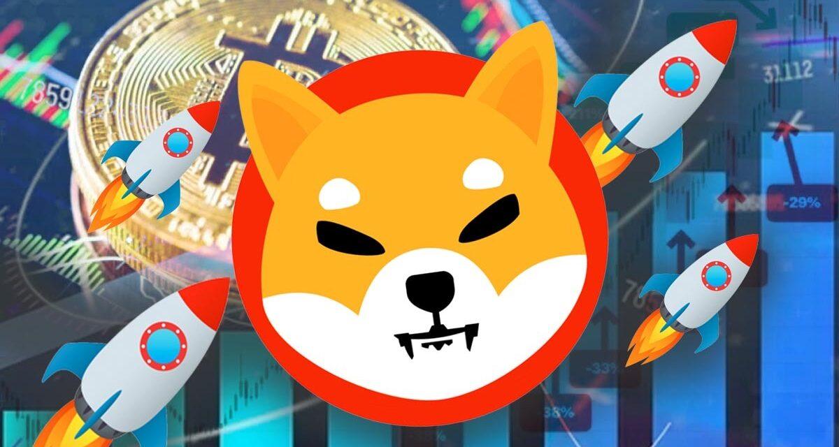Shiba Inu logra su cometido de destronar a Dogecoin. ¿Ahora qué sigue?