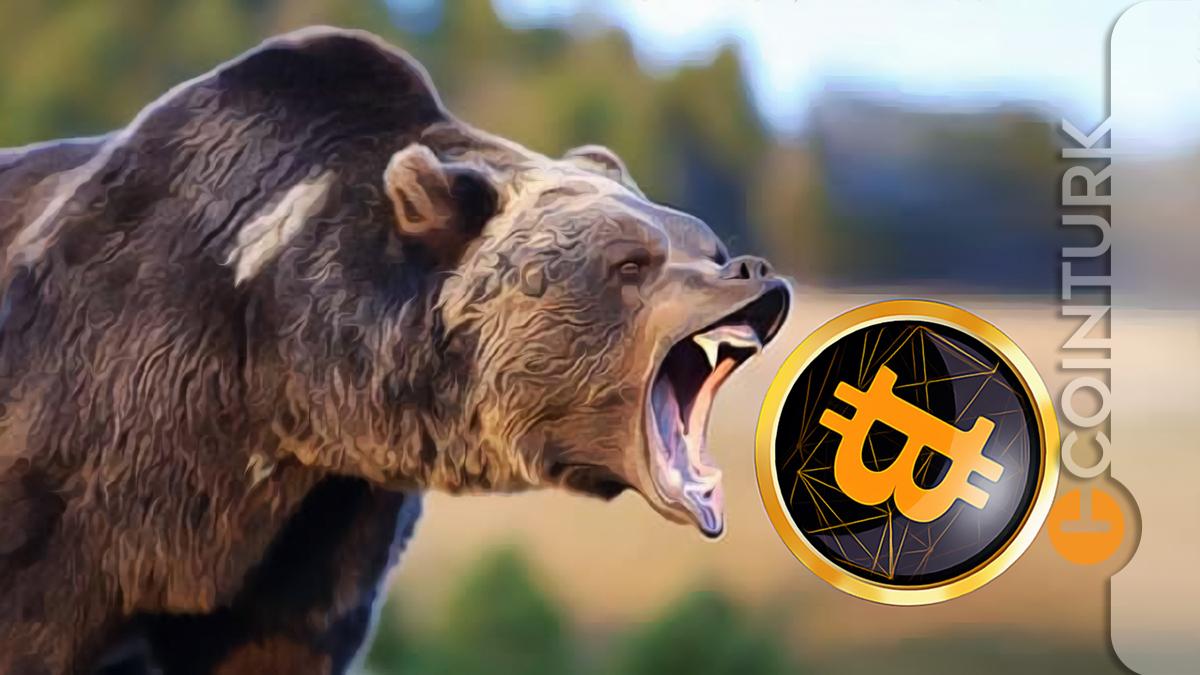 Usta Trader Peter Brandt Açıkladı! Bitcoin Ayı Piyasası Sinyali mi Veriyor?