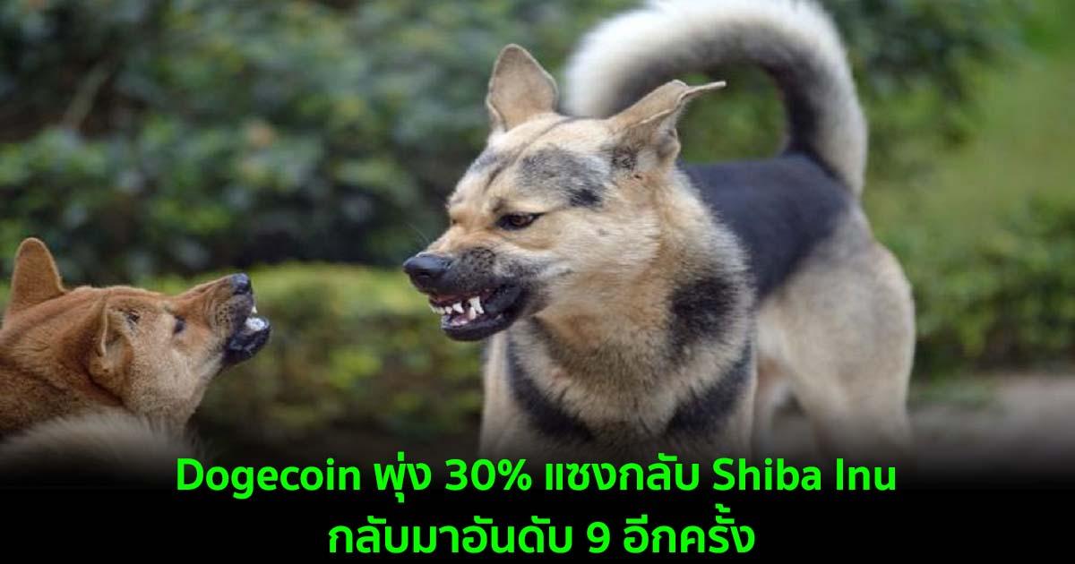 Dogecoin พุ่ง 30% แซงกลับ Shiba Inu กลับมาเป็นเหรียญใน 9 อันดับแรกอีกครั้ง