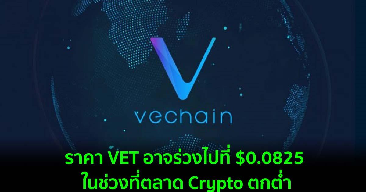 ราคา VET อาจร่วงไปที่ $0.0825 ในช่วงที่ตลาด Crypto ตกต่ำ
