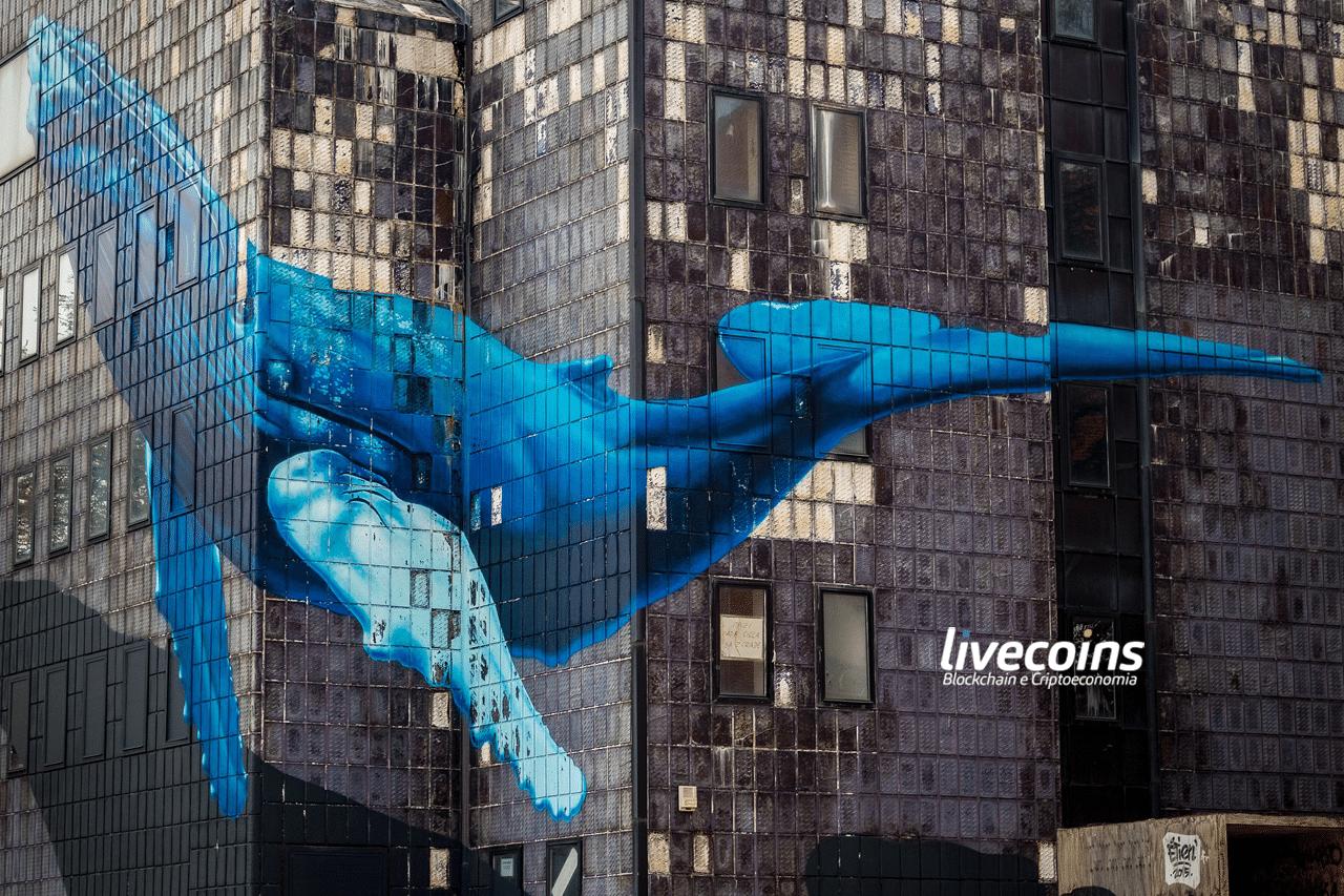 Terceira maior baleia aproveita queda e compra R$ 205 milhões em Bitcoin