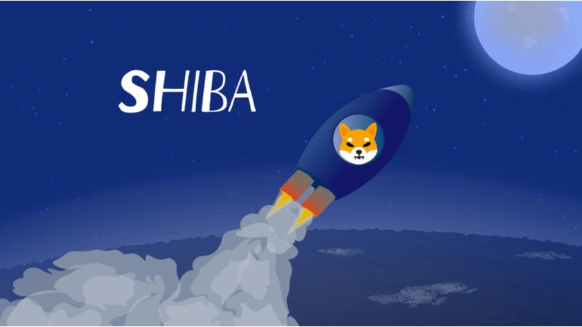 Shiba Inu: Die große Rallye, der Absturz & die zukünftigen Auswirkungen