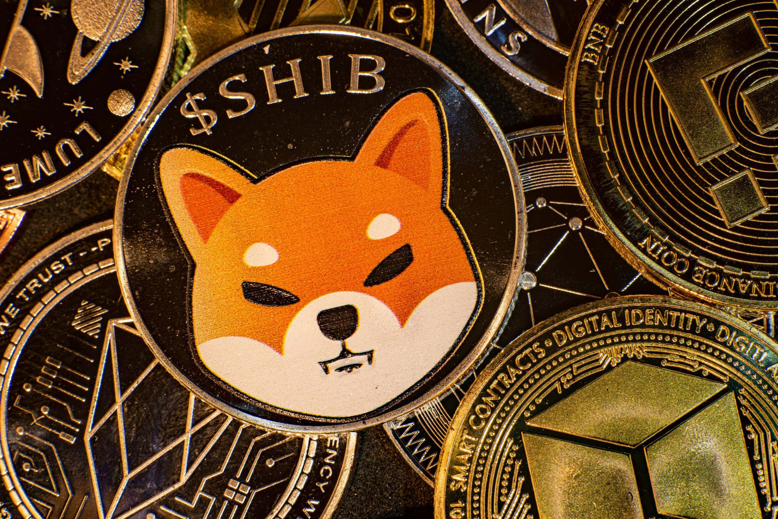 Shiba Inu knackt Allzeithoch – Krypto-Wal kauft 277 Milliarden SHIB