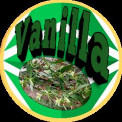 Vanilla Coin