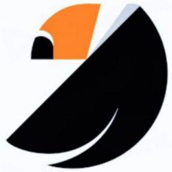 Crypto User Base