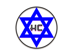 The HoloCoin
